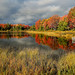 Autumn Morning at Otter Lake by Cole Chase Photography