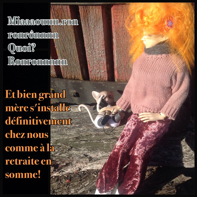 [PS gagnantes jeux mortemiamor] rosemary 9 nov 15 - Page 5 22279794183_f2edf659be_z