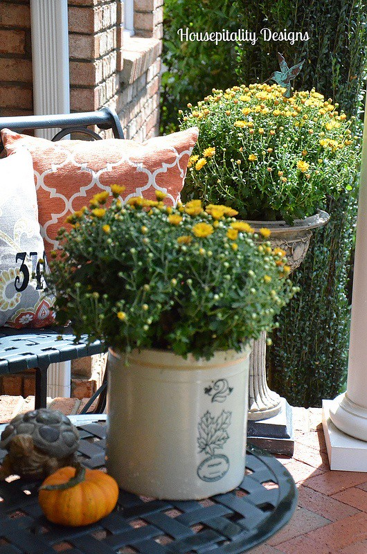 Fall mums - Housepitality Designs