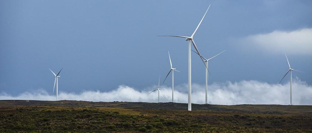 Loeriesfontein wind farm, South Africa (140 megawatts)