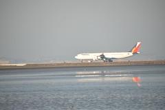 RP-C3439 landing SFO 1-2-15 5