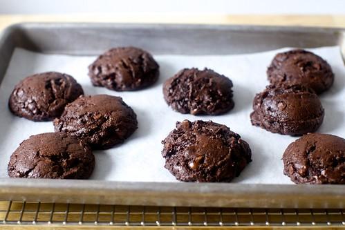 the browniest cookies