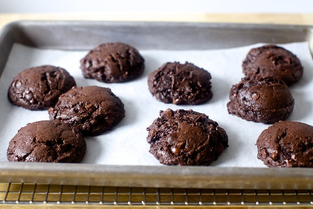 the browniest cookies