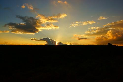 Puesta de sol Pajaroncillo