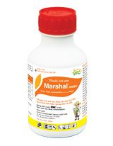marshal - b