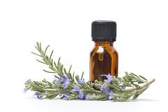 Rosemary Essential Oil | HYSBIO Morocco