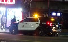 LAPD - Ford Police Interceptor Utility - (92)