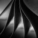 Day 338: Gentle folds by melroselass