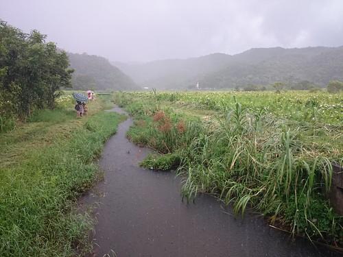 水上草原_2015.08.29-08