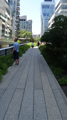 New York High Line Garden Aug 15 (11)