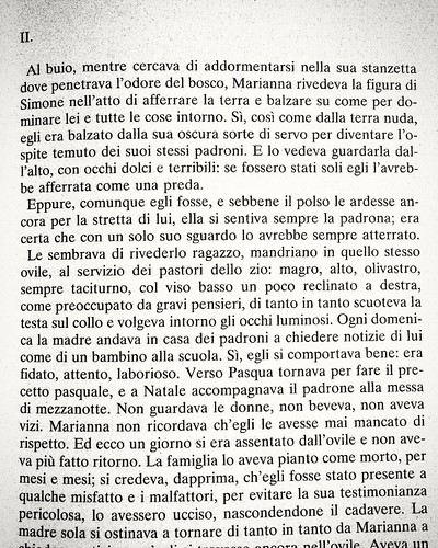 Pagina 33