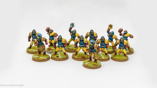 BloodBowl team