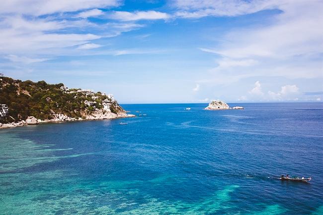 Koh Tao Shark Island