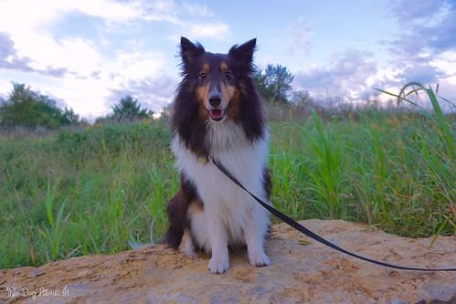 Posing at the Park