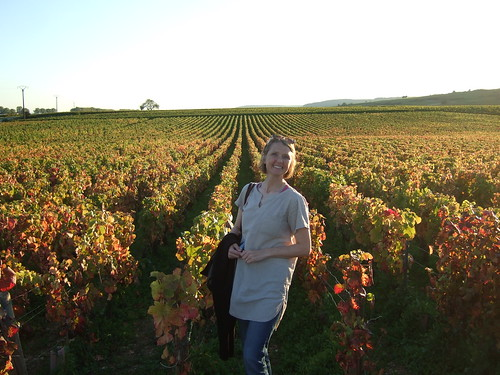 James Pics - Vineyard Evening Hike in Beaune