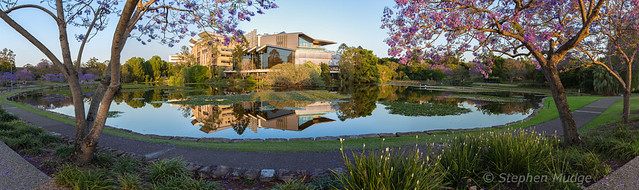 UQ Lakes at sunrise