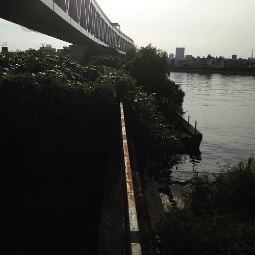 川沿いを行けるのはここまでっぽいな。さて。