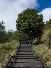 觀霧國家公園
