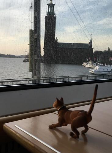 minijake_stockholm1