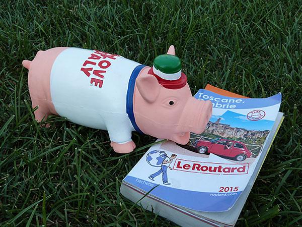 cochon dans l'herbe