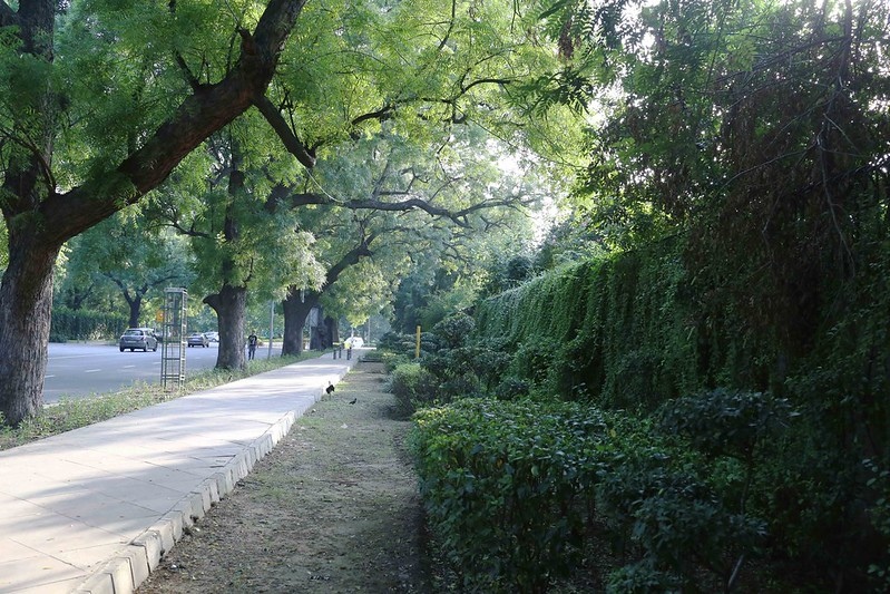 City Walk - Aurangzeb Road, Central Delhi
