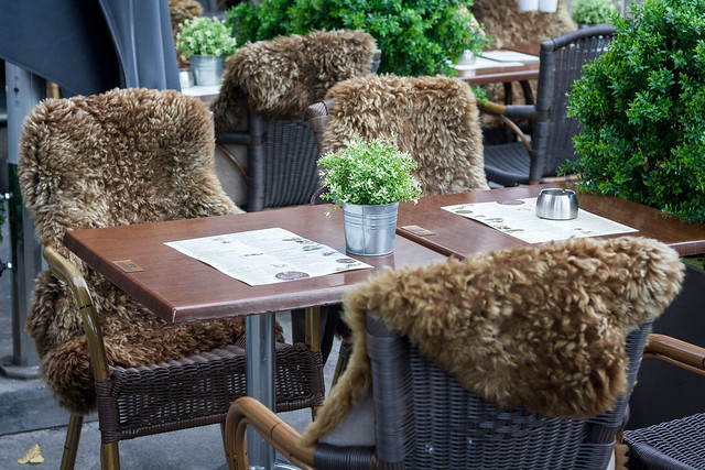 Furry chairs, Bergen