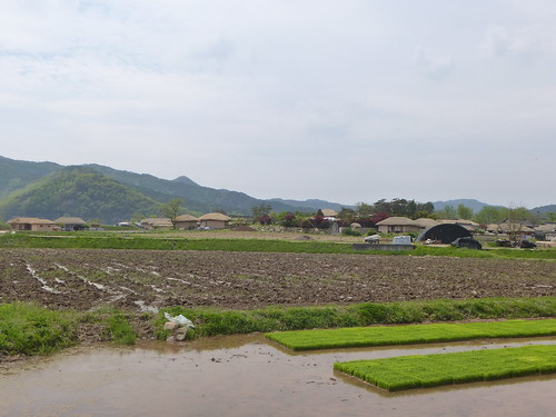 Co-Andong-Hahoe-Village (5)