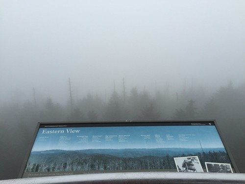 Clingman's Dome hike 3