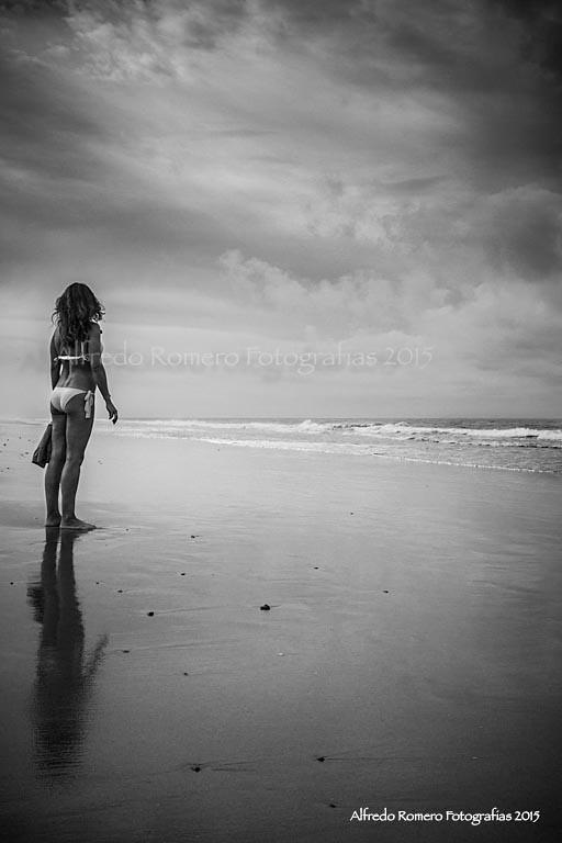 Nos ocupamos del mar