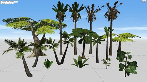 Plant Comparison 2