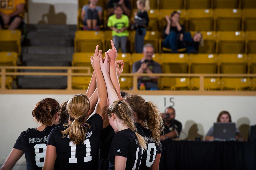 Volleyball vs Lindenwood - November 7, 2015