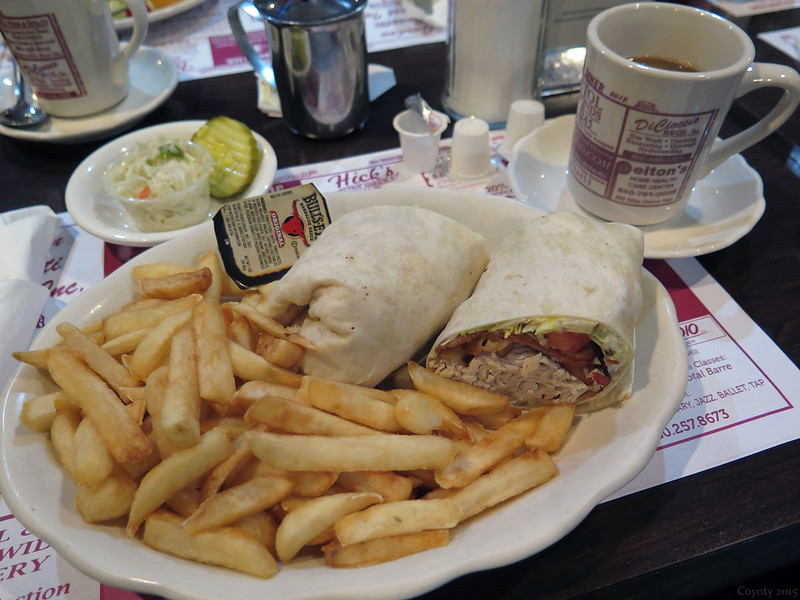 Turkey wrap and fries