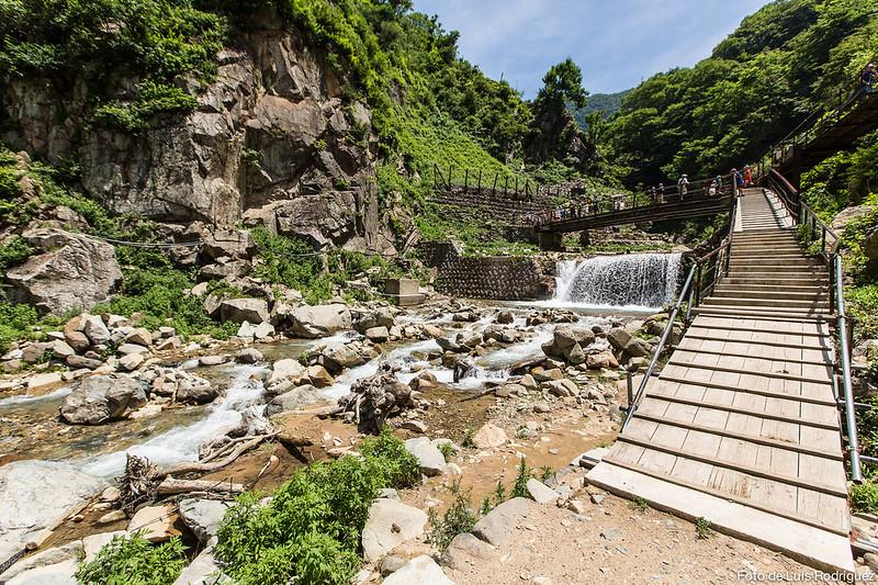 Excursión a Jigokudani-114