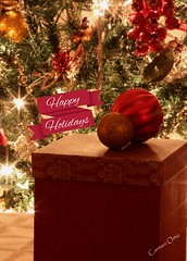 Christmas/holiday 2015