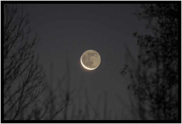 croissant de lune-2