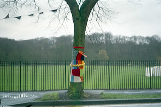 yarn bombing in the rain