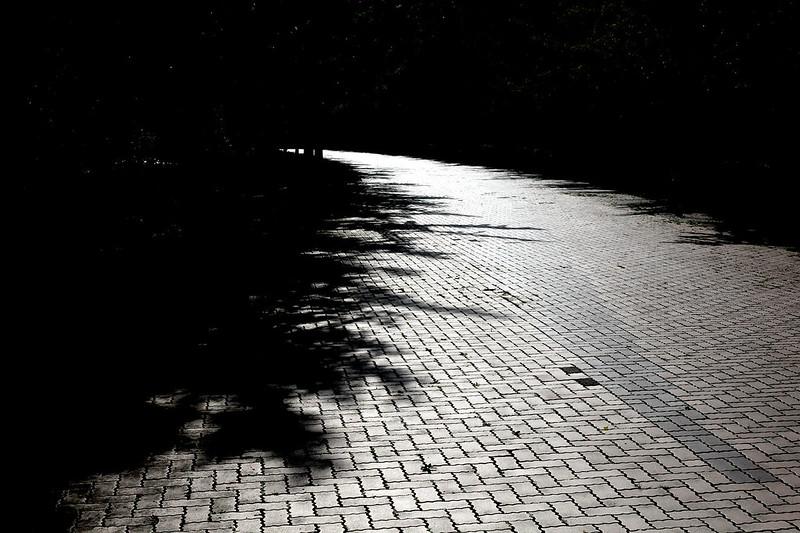 http://www.flickr.com/photos/142882834@N02/29593442450
