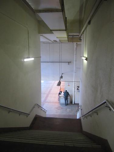 金沢競馬場の2階へ上がる階段