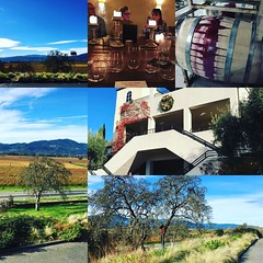 First stop #Miner #NapaValley vineyards #love #thisisthelife