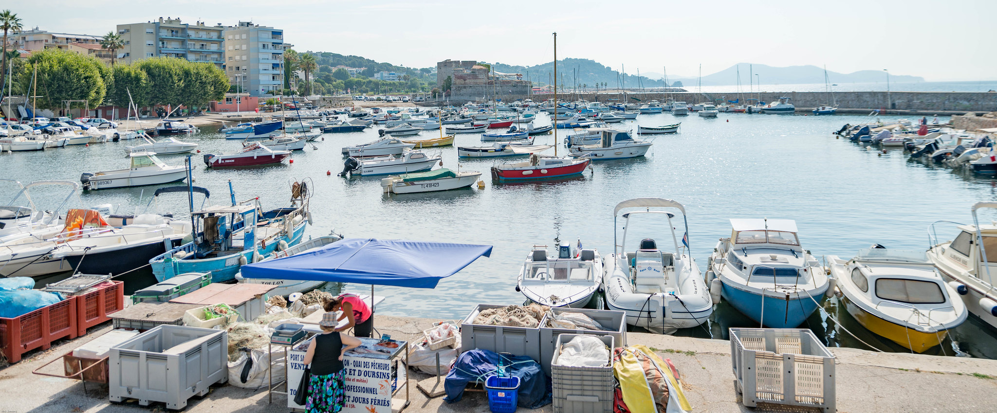 Woman buying fish at the boat pier in southern France