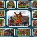 FruitCorso Tiel 2015 by gill4kleuren - 18 ml views