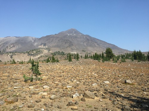 PCT: Day 133