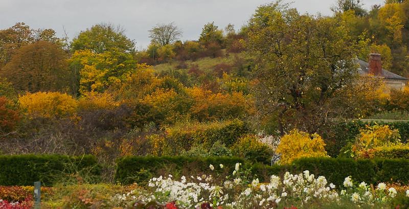 Giverny-30.jpg