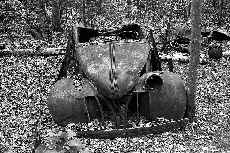 Rusted in the Woods
