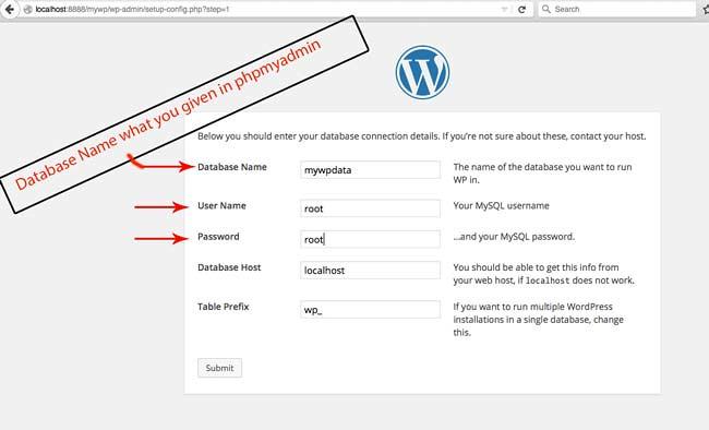 entering-the-wordpress-configuration-settings