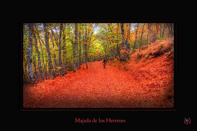 2015_10_18_Hayedo_Montejo_111