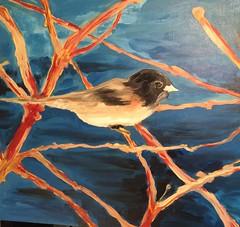 'My Birds'