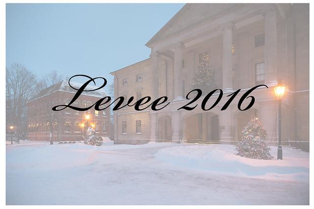 Levee 2016