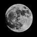 Feel The Super Moon by cogdogblog