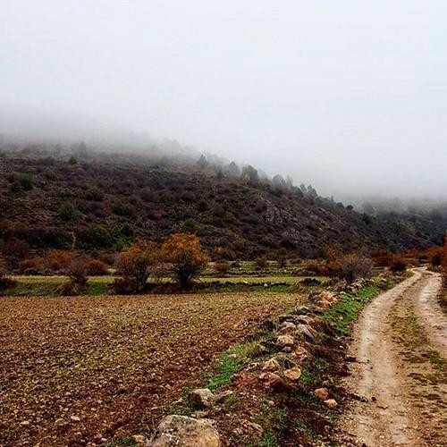 Disfrutando de los paseos otoñales de la #SierraDeAlbarracín